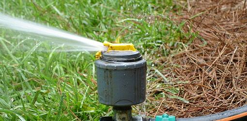 Lawn sprinkler watering grass.