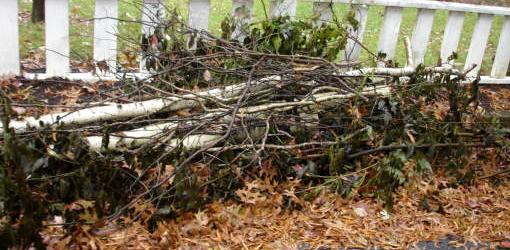 mulch debris