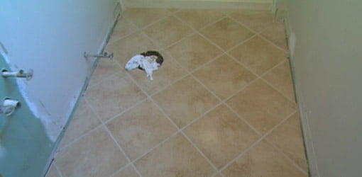 How to Tile a Bathroom Floor | Today\'s Homeowner