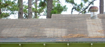 Roof cleaned with oxygen bleach and chlorine bleach . Galvanized vent prevented algae growth.