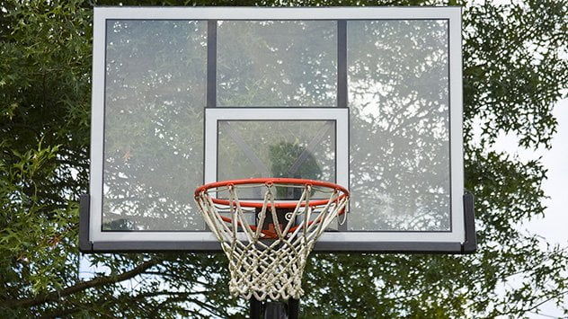 basketball goal web