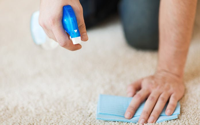 Blotting a stain set in carpet