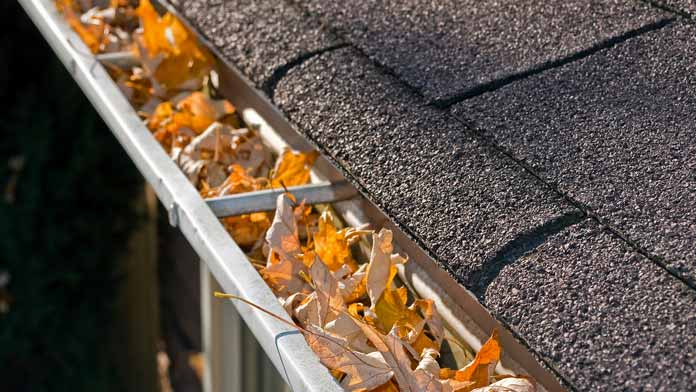 Spring leaves in gutters