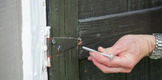 Carriage bolt securing shed door
