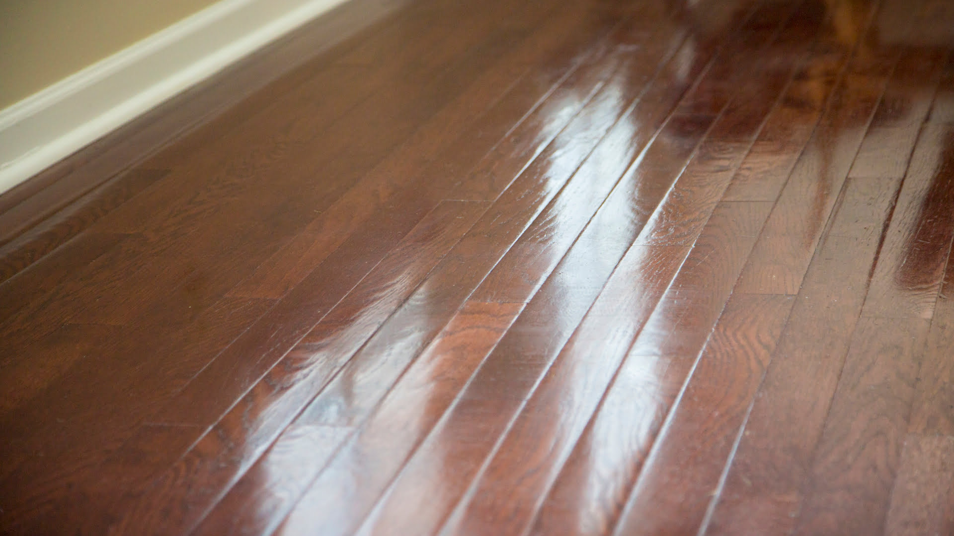 Newly stained and sealed wood floors