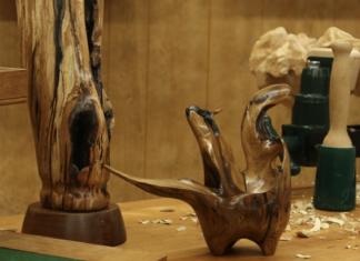 Woodcraft workshop