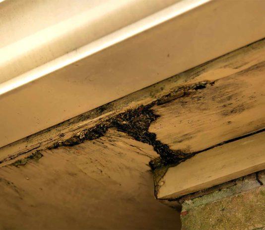 Damaged fascia on home