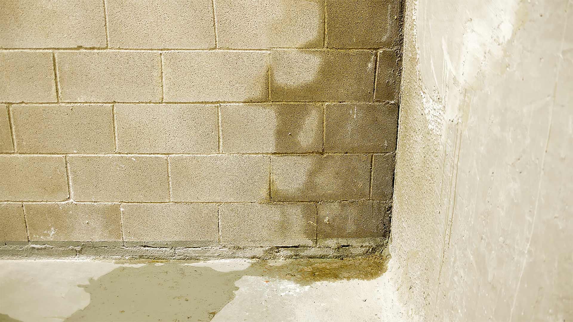 Water damaging a basement