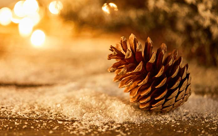 Holiday decor with pine cone and fake snow