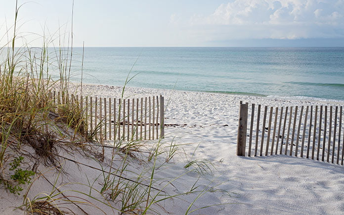 Wooden fence, made from recycled Christmas trees, bordering a beautiful beach at sunrise.