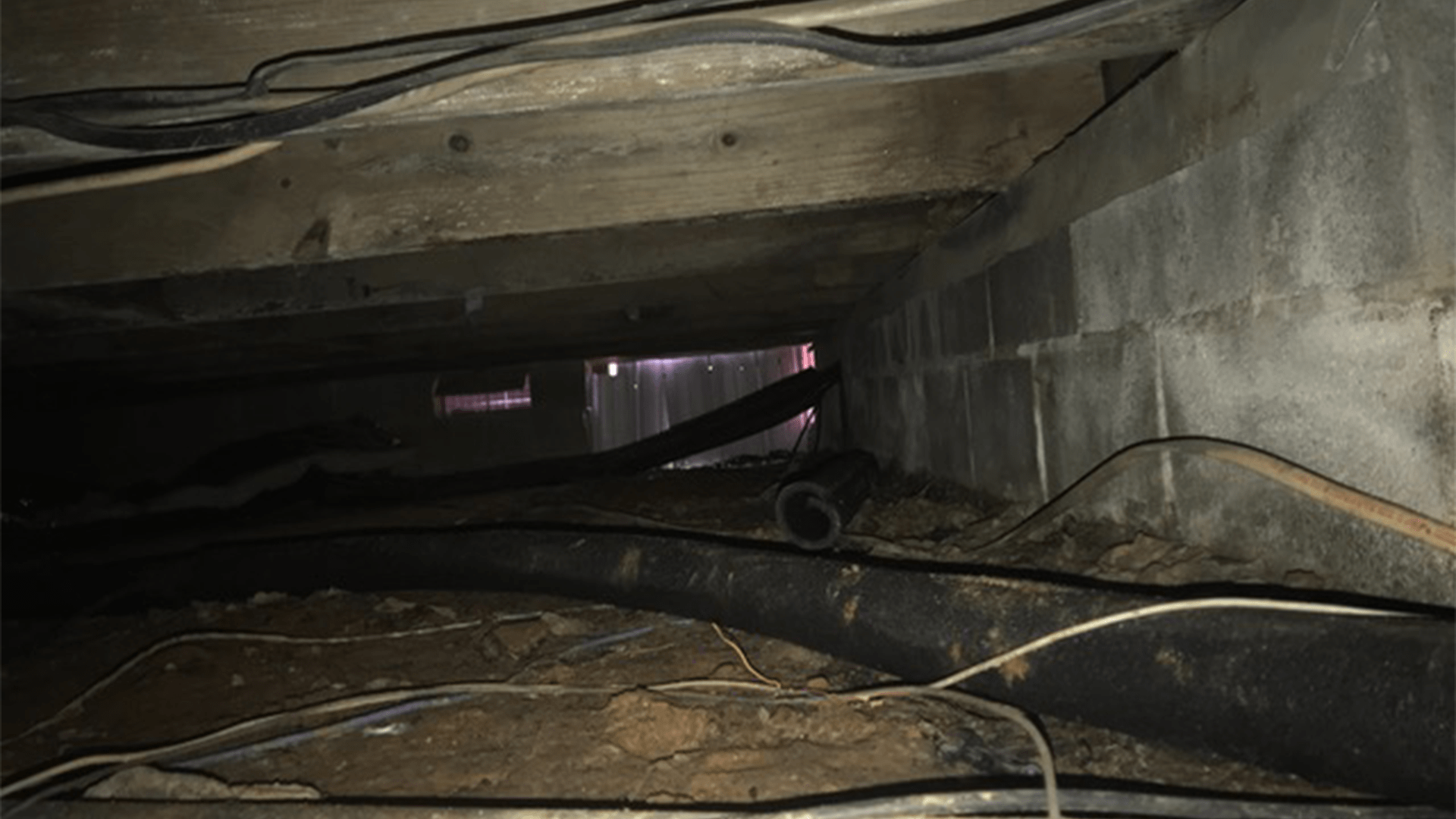 Mold on joists in crawlspace