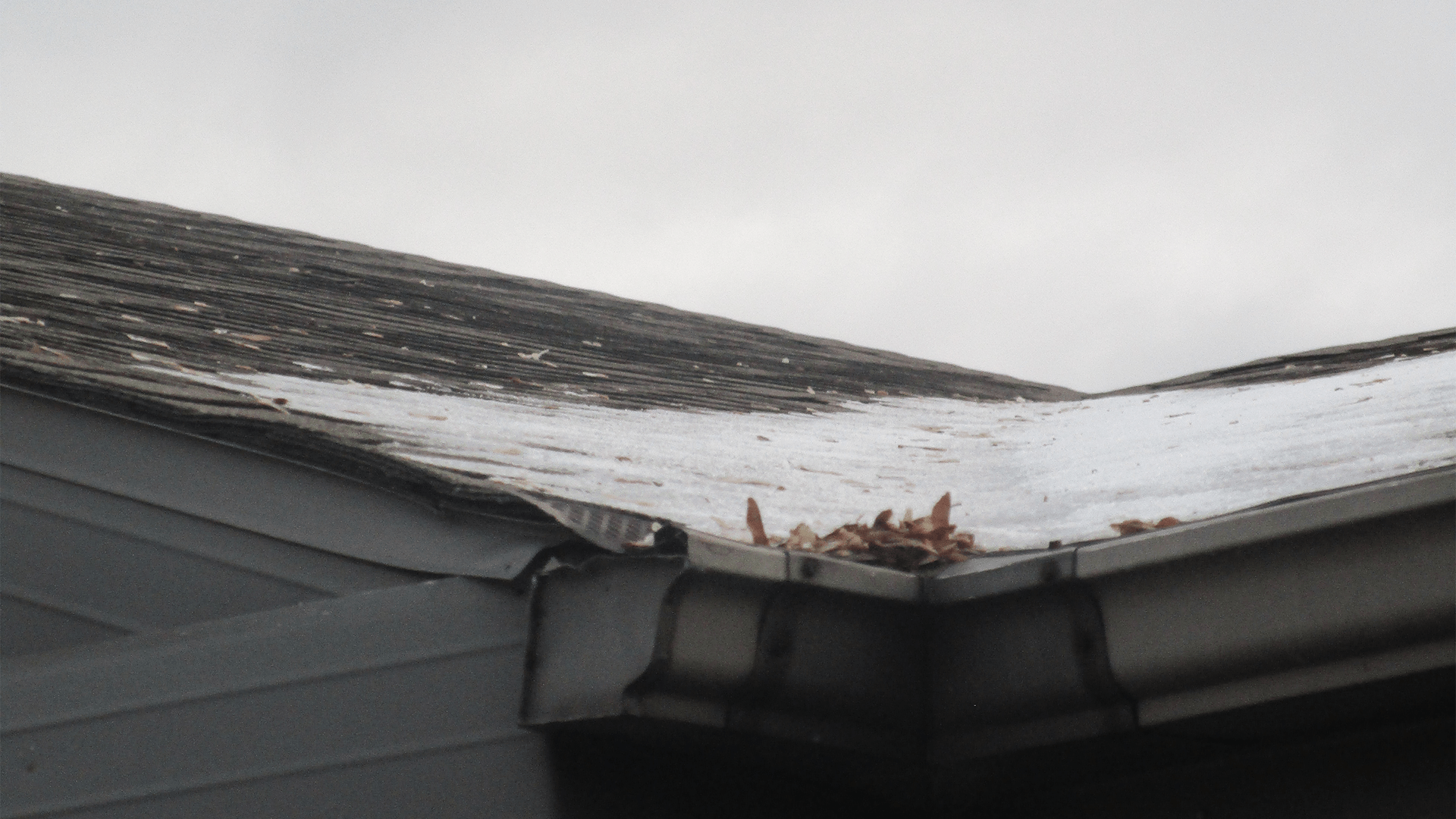 Ice dams on Daniel's roof