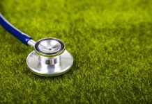 Lawn Doctor Review: Stethoscope on green grass