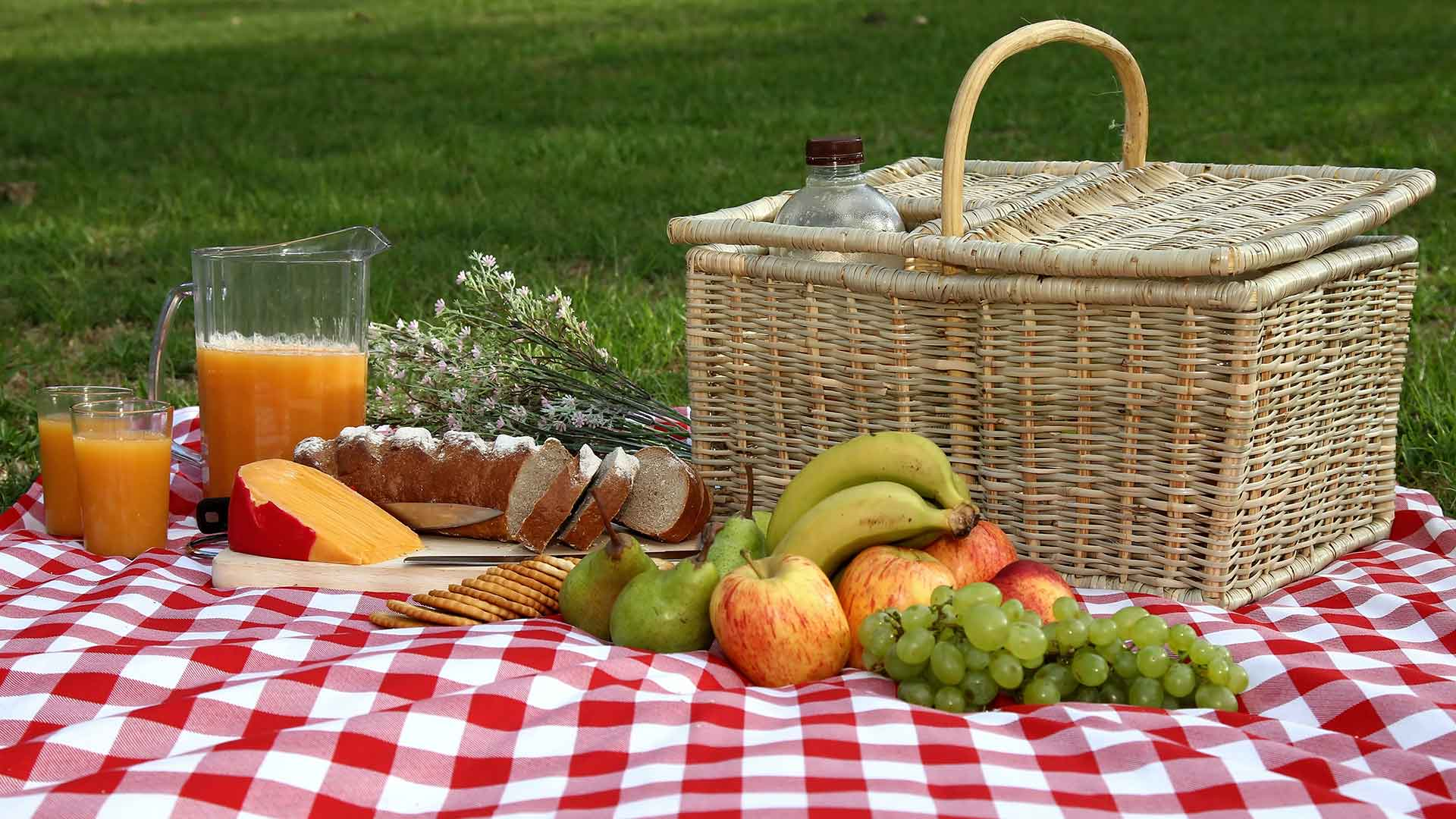 Picnic basket, tablecloth and food spread out in a backyard