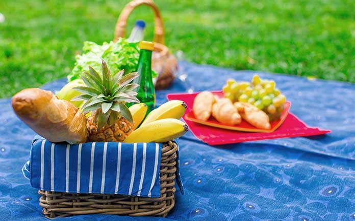 Stenciled tablecloth spread on lawn for picnic
