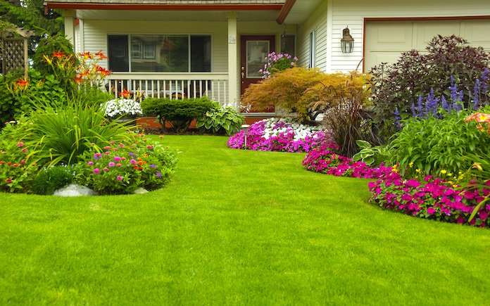 Green lawn surrounded by colorful flower beds