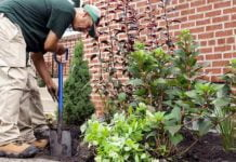 Spring gardening near brick home