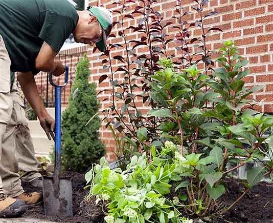 Spring gardening near brick home