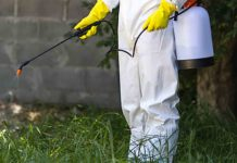 Pest control employee applies termite treatment on the ground