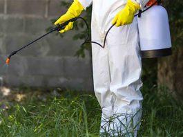Pest control employee applies termite treatment on the ground