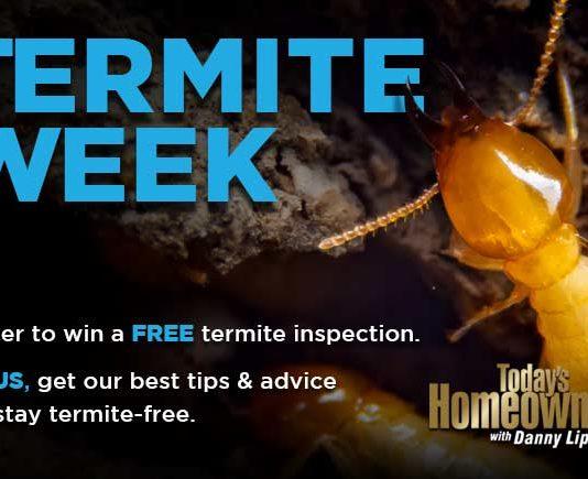 Termite Week