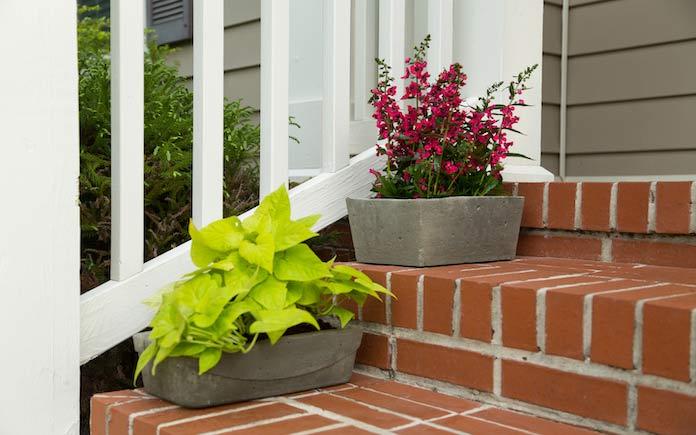 Concrete planters on front brick steps