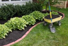 Mulching the backyard with a wheelbarrow filled with mulch and a shovel