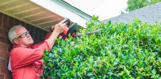 Danny Lipford trims trees and bushes while wearing safety glasses