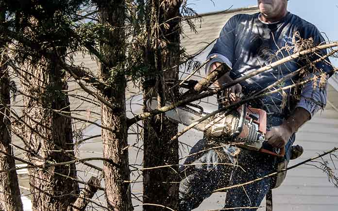 Man trimming a tree limb near his home's roof