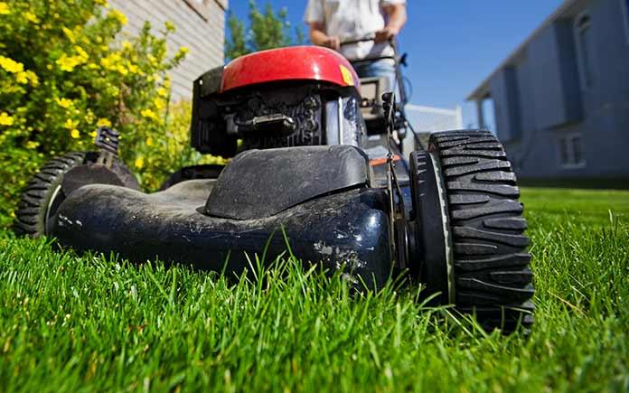 tondeuse à gazon rouge roulant sur des brins d'herbe