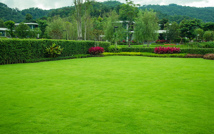 Front lawn landscaped lawns and gardens. planted trees for a green fence, Landscape design with modern garden houses Landscape, bushes, flowers, mountains and blue sky background.