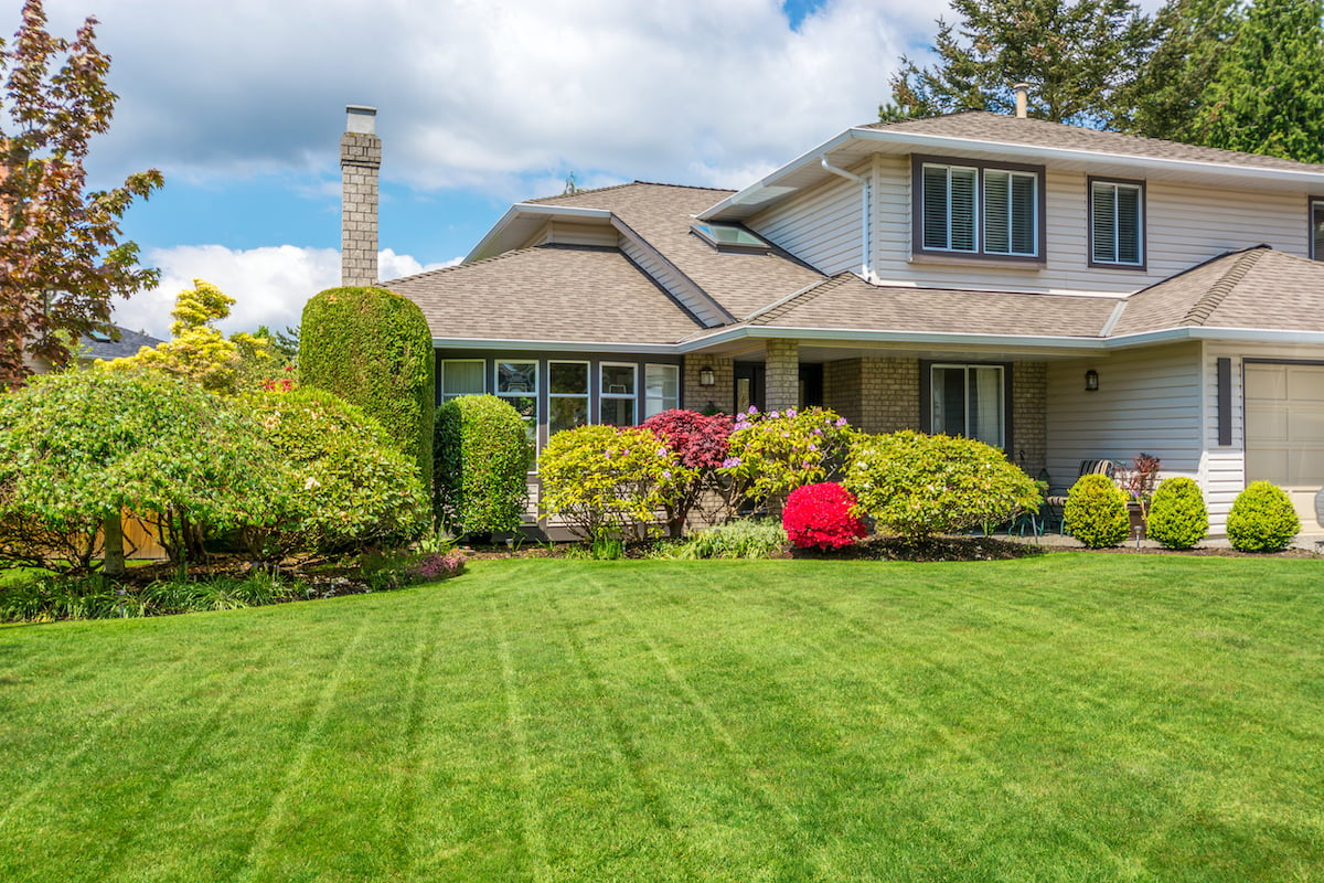Superior Lawn Care Review | Today's Homeowner