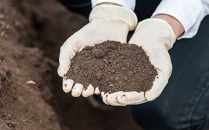 gloved hands holding soil before testing its PH value