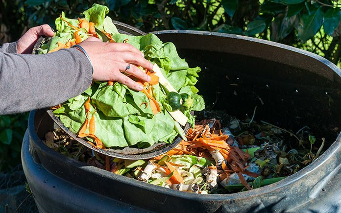 Woman adds food scraps to her composting bin, as seen close up, in her eco-friendly backyard.