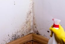 Cleaning black mold off a bathroom wall
