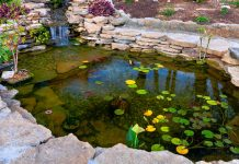 Man-made pond in a beautiful, well-designed garden