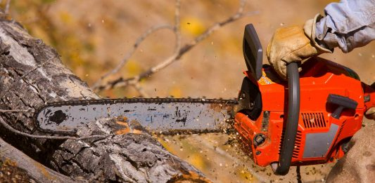 Sawing wood outside with a chainsaw