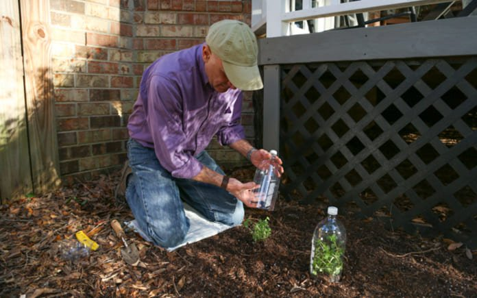 On a Simple Solutions segment of Today's Homeowner, Joe Truini teaches how to use a soda bottle to create a mini greenhouse for outdoor plants.