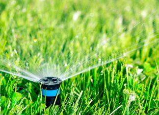 Sprinklers in the grass