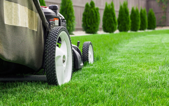 The Best Lawn Care in Jacksonville (2021)