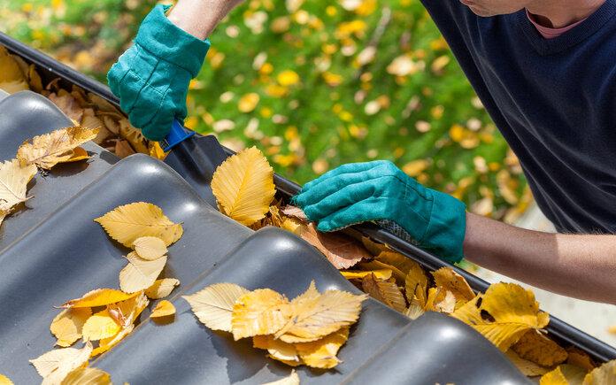 Best Gutter Cleaning in Cincinnati   2021